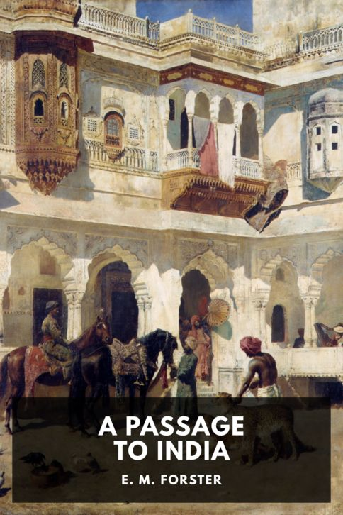The cover for the Standard Ebooks edition of A Passage to India, by E. M. Forster