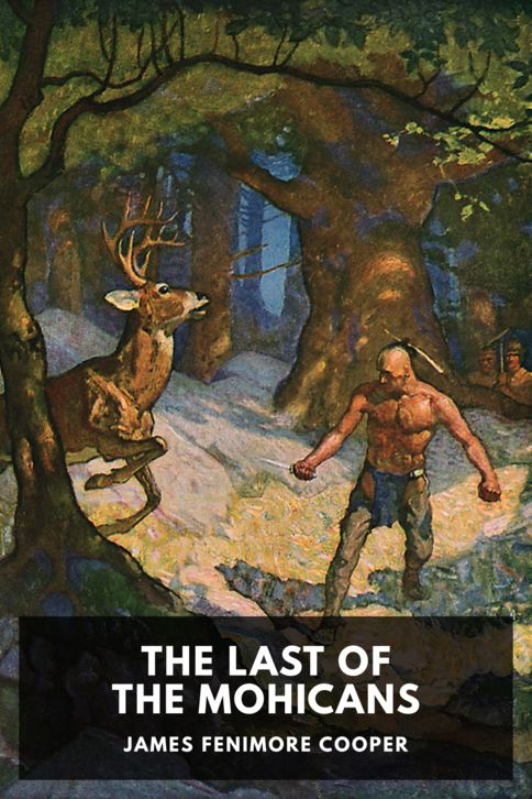 The cover for the Standard Ebooks edition of The Last of the Mohicans, by James Fenimore Cooper