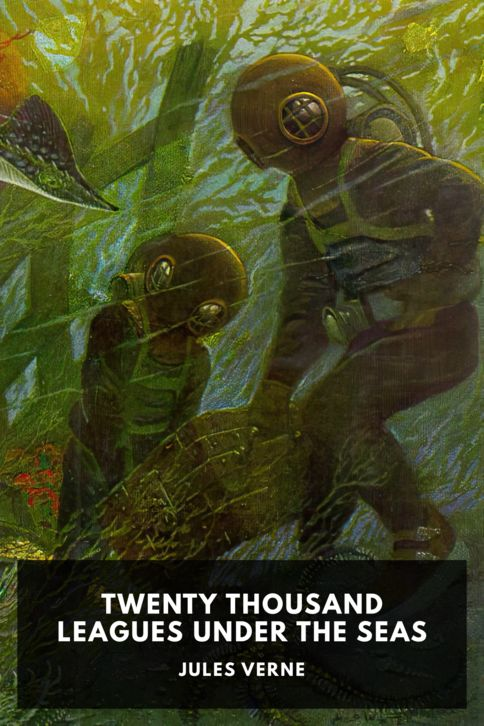 The cover for the Standard Ebooks edition of Twenty Thousand Leagues Under the Seas