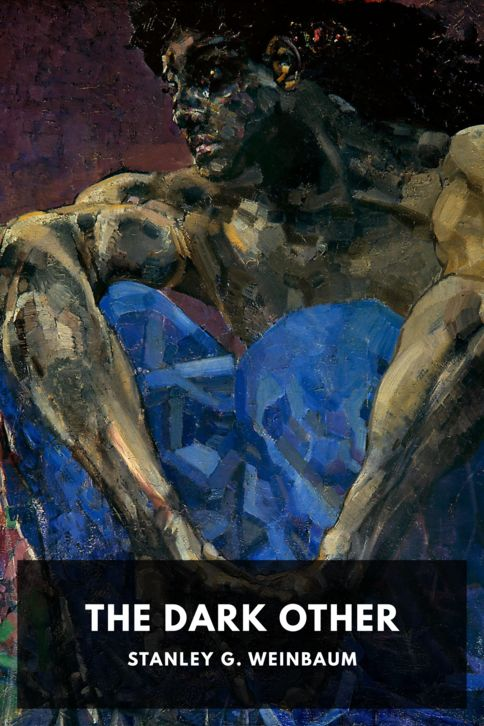 The cover for the Standard Ebooks edition of The Dark Other